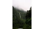 Waterfalls and luxuriant rainforest.